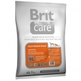 Medium Breed 1kg Miel şi Orez - BRIT CARE