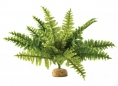 PLANTE EXO TERRA BOSTON FERN M